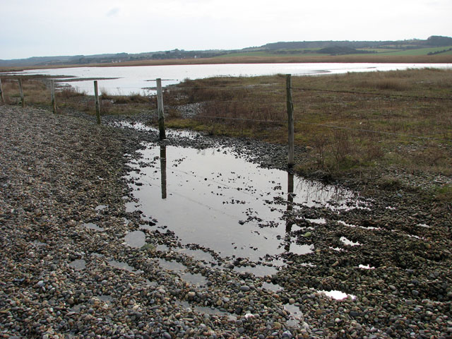 Marshland meets shingle