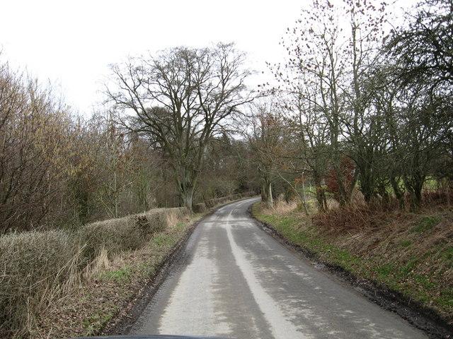 Country road heading towards Riddell Farm