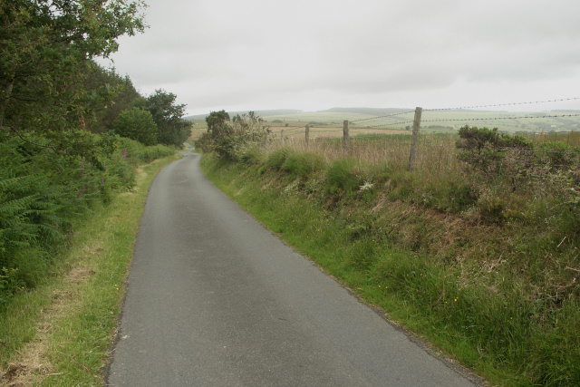 Looking north west along forest edge lane