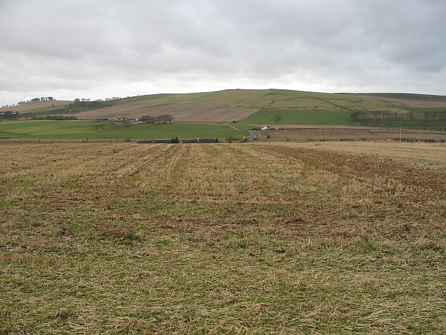 Stubble by Hillhead