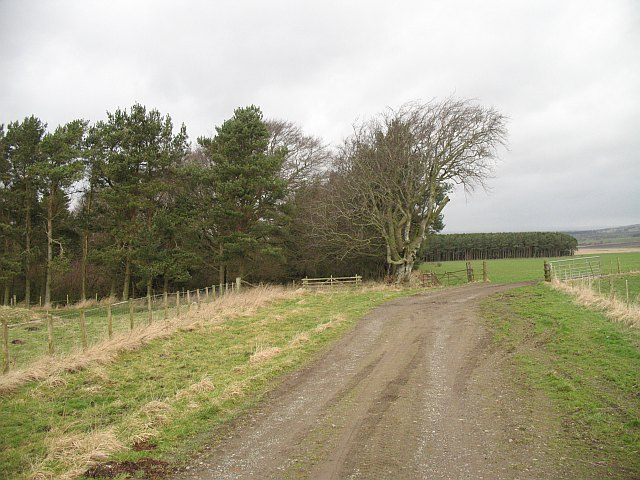 Farm road, Hillhead