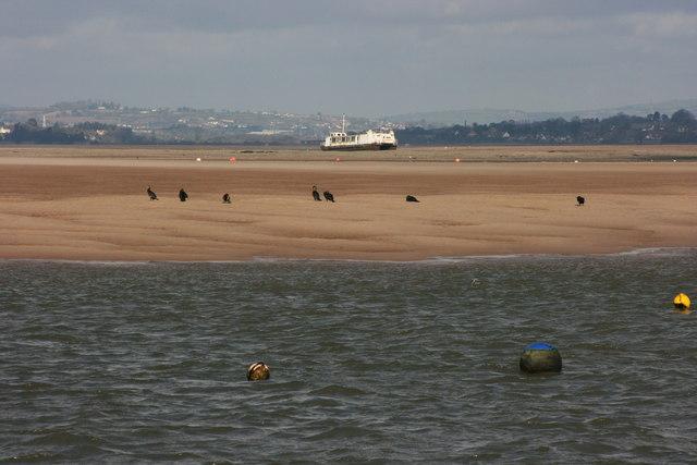 Bull Hill Sands in the River Exe estuary
