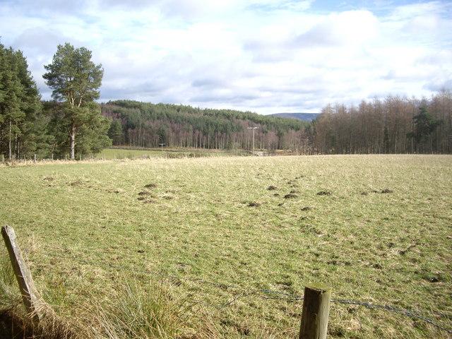 View towards Gordonstone/Minew junction