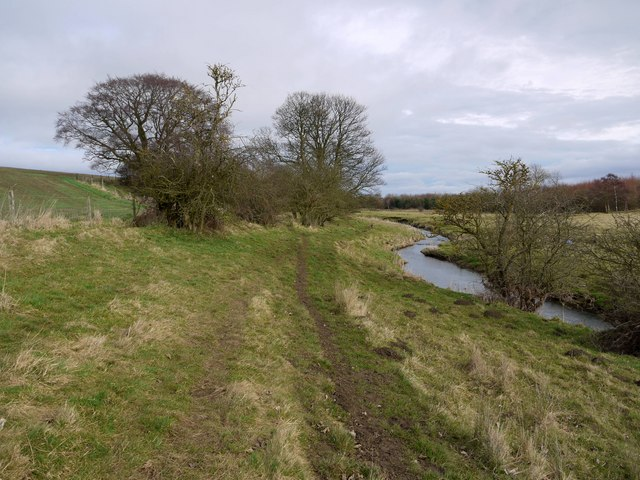 Wooded banks of the River Pont north of Benacres Plantations