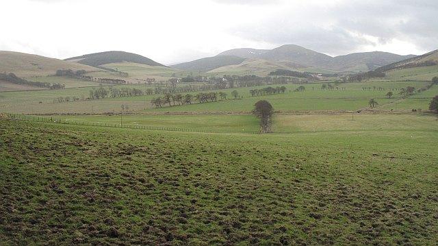 Pasture, Burnetland