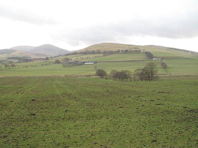 Mucky field