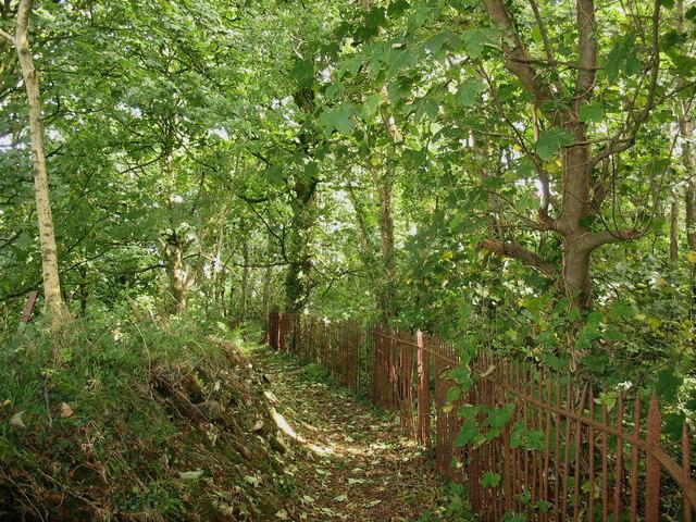 Path around the northern perimeter of Plas Llanddyfnan