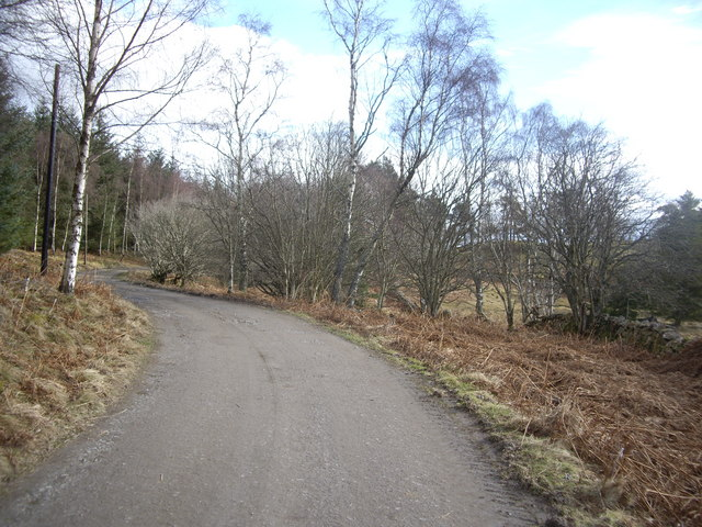 Track from Minew to Pitmurchie Road.