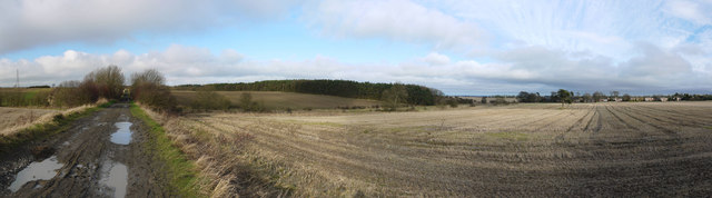 Bridleway and National Cycle Route on old railway west of Ponteland