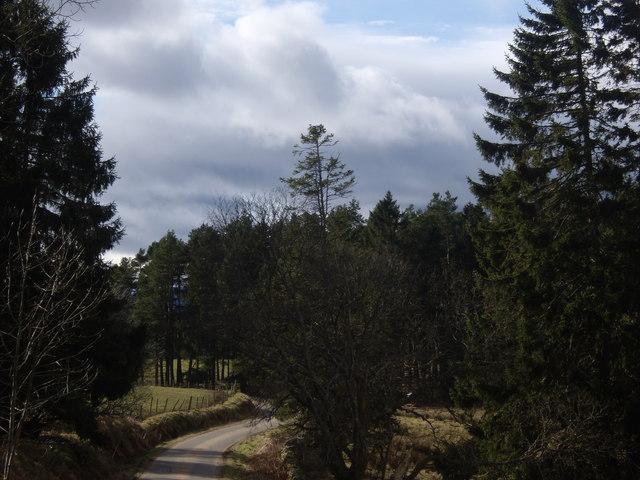Public road near Stranduff