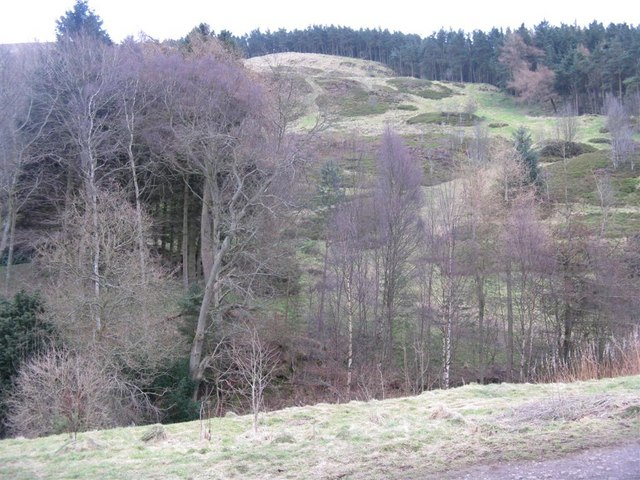 White Hill from Bonaly