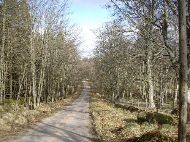 A dip in the Pitmurchie Road