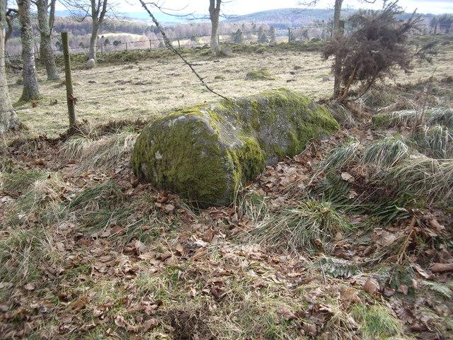 A roadside boulder