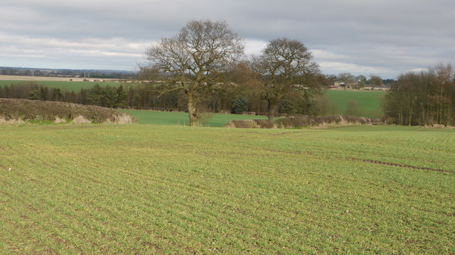 Arable land at Farrick Hill