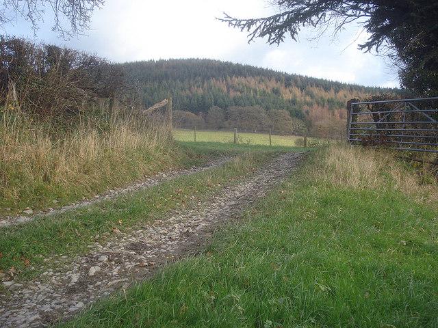 Farm gateway at Leinthall Barns Farm