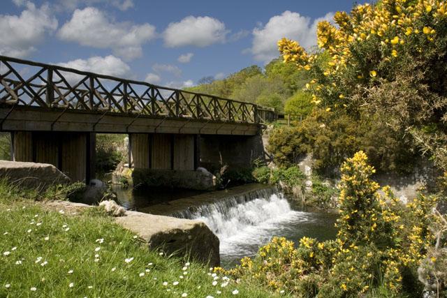 Hulne Park, Alnwick