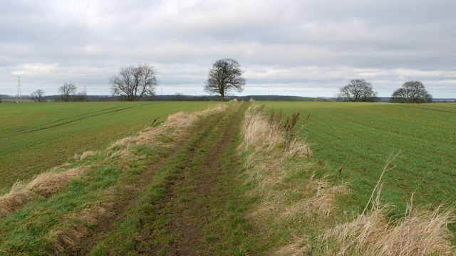 Bridleway at Farrickhill