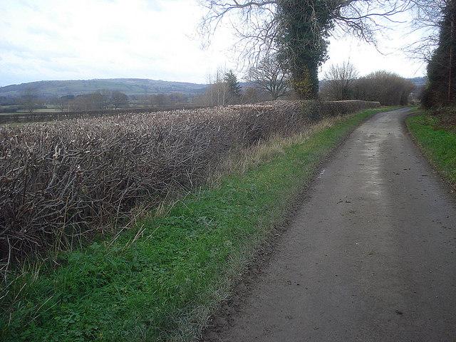 Lane to Leinthall Starkes