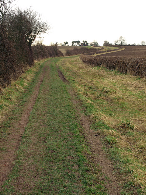 Bridleway to Little Driffield