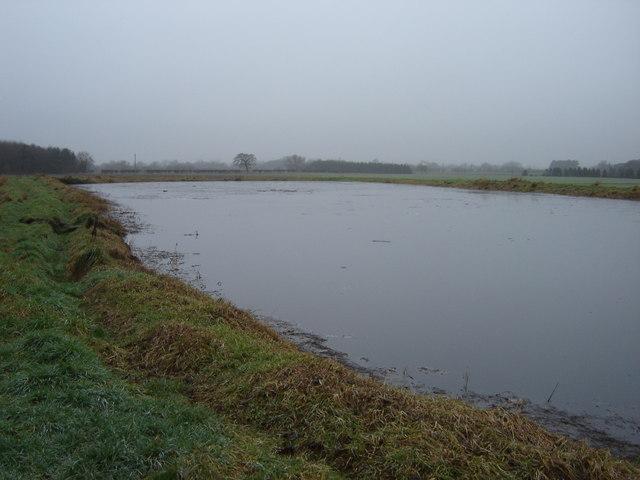 Slurry  Pond  near  Fordington  Lodge  Farm