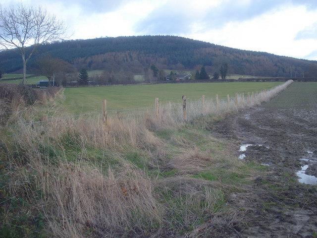 Mixed farmland west of Leinthall Starkes