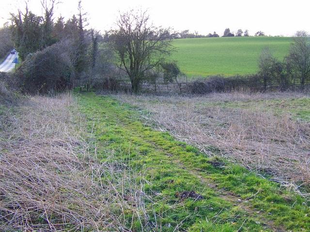 Footpath to Stinsford