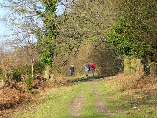 Walking along the Coppet Hill ridge