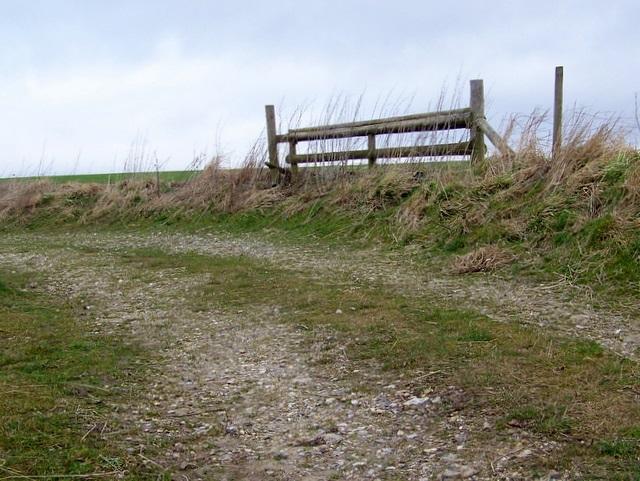 Horse jump, Marleycombe Hill
