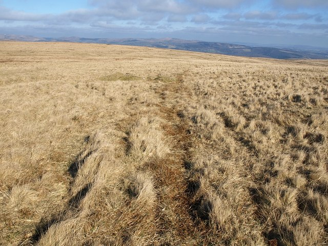 Moorland northeast of Ryder's Hill