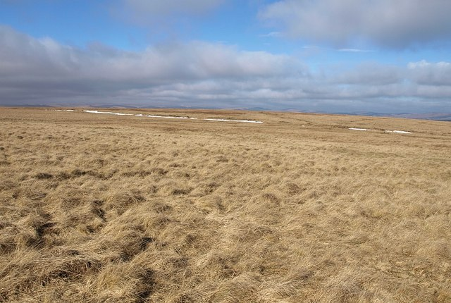 Moorland northeast of Ryder's Hill (2)