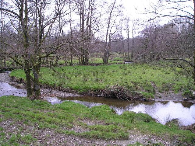 Meanders in the Nant Cledlyn
