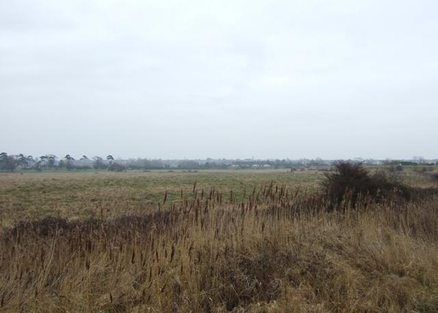 West  Marsh, Brightlingsea
