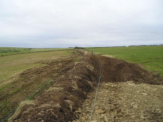 New Field Boundary