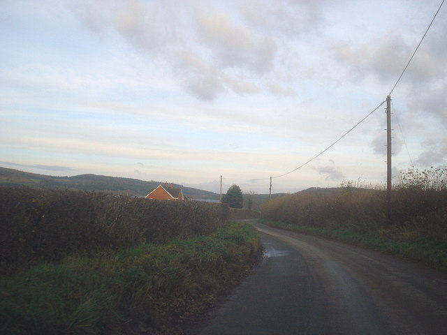 Lane at Westfield Farm