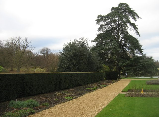 Perfect lines - The Vyne