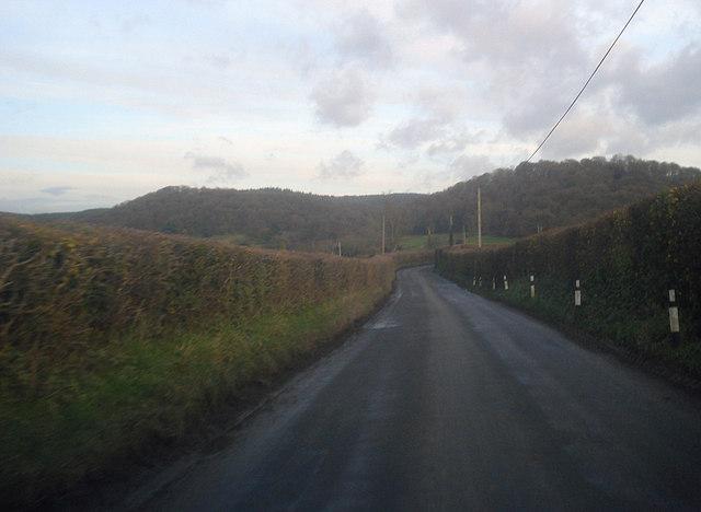 Lane near Petchfield Farm
