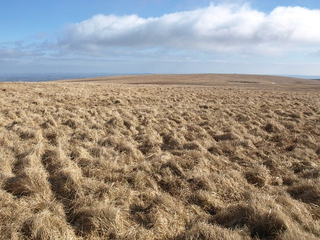 Moorland southeast of Ryder's Hill