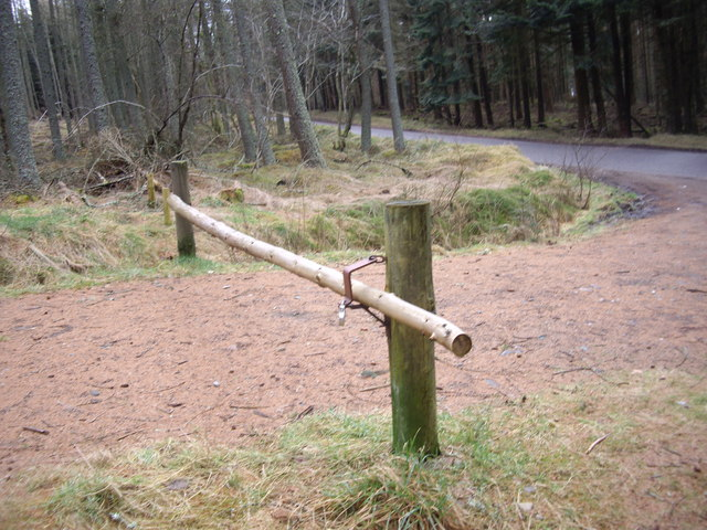Barrier to woodland entry