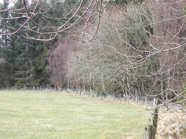 A field on Glassel estate