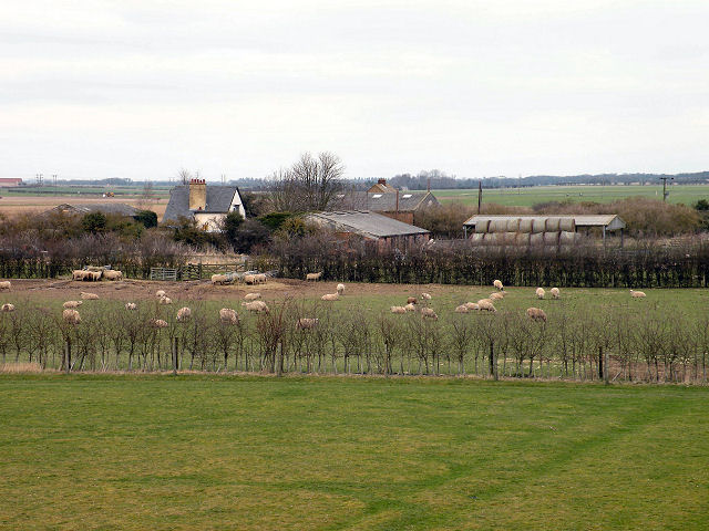 View of Ditch Farm from Devil's Dyke