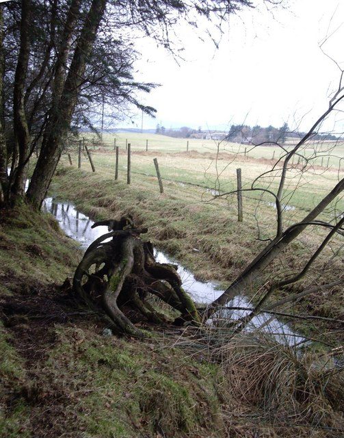 Drainage by Kynoch plantation