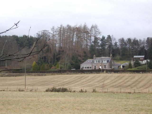 Birchbank and Tillyfaud Wood
