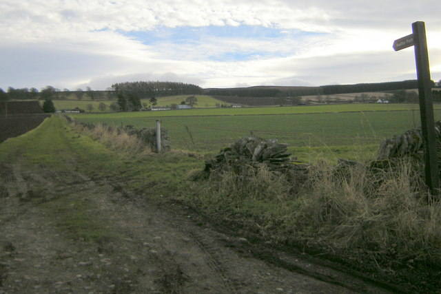 View of Keillor area near Newtyle