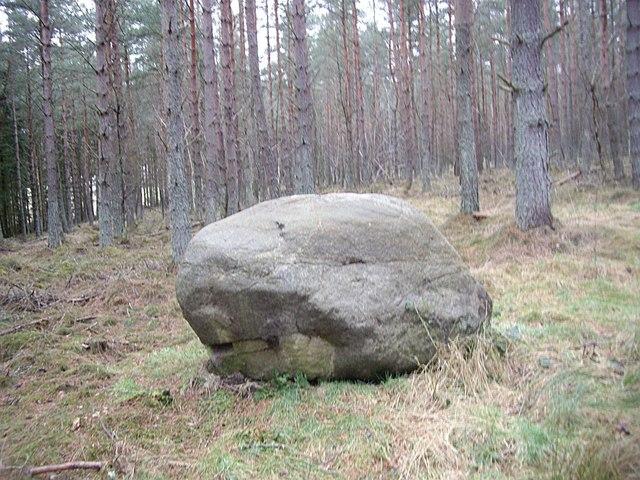 Glacial pebble!