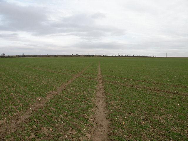 Footpath to Devil's Dyke
