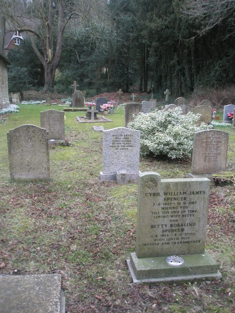 Gravestones in the churchyard of  St John the Evangelist, Langrish