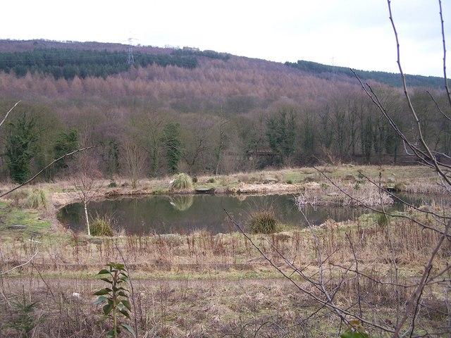 More Hall Fishing Pond ... Draining Away!