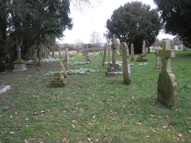 Snowdrops in Ropley Churchyard