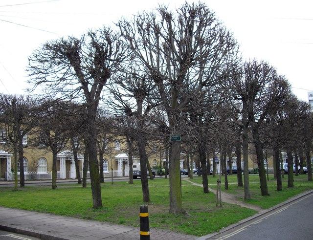Courtenay Square