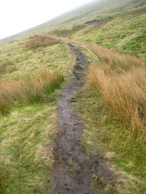 Path up Pendle